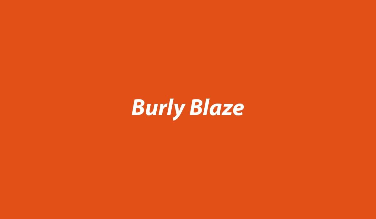 Burly-Blaze-Swatch